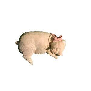 Shelf Pig
